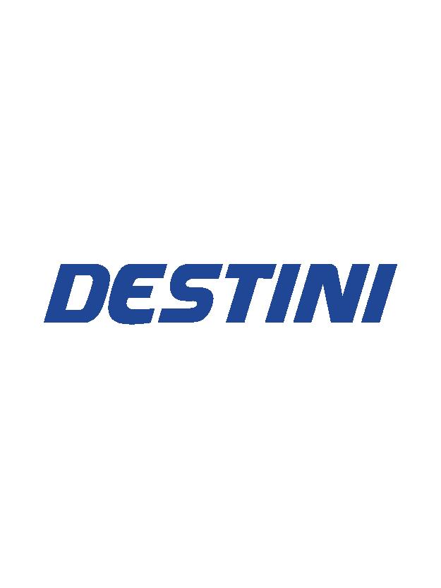destini-01.png